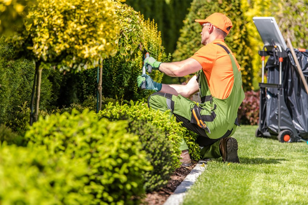 Mowing Company in Rapid City